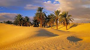 The oasis of the heart in the barron desert of the mind
